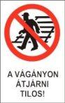 A vágányon átjárni tilos! (TÁBLA)